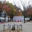 秋の風景と先週の美味しかった物( *´艸`)