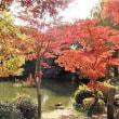 安佐動物公園(2)