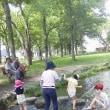 川遊びとピクニック