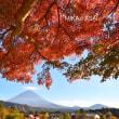 富士山&紅葉。。。河口湖&いやしの里根☆