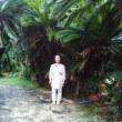 思い出の徳之島