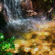水の有る風景ー54