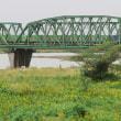 天竜川橋梁を渡る 遅54レ? (2017年10月21日)