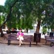 オーストラリアの メルボルン ユーカリの木陰で