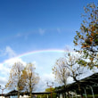 虹 嵐のあと