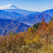秋の百蔵山