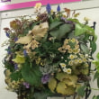 クリスマスローズの世界展:ほかの花