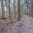 春休みの最後を飾る林道ツーリング2018