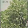 「アカシアの花のさきだすころ―ACACIA― 」辻仁成