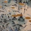 ■森迫暁夫 シャイシャイン展 (2018年3月6~11日、札幌)
