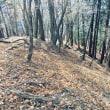 今年の登り納めはオーソドックスにね‼️(^ν^)塔ノ岳〜鍋割山