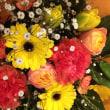 春の可愛らしい花束