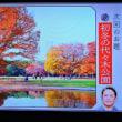 11/23 夏井先生 次回のお題 初頭の代々木公園