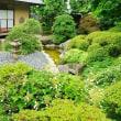 アジサイ咲く庭園(徳水亭 2018.6.17 撮影)