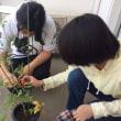 トマト収穫!(^^)! アカデメイア高等学院