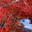 紅葉の中に富士山