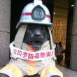#330 -'17.     上野の杜を後に銀座へ