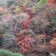 大台ヶ原山~大峰山(八経ケ岳)(奈良・三重)