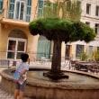 Istresの街を歩く