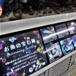2018新春☆那覇ステイツアー その15/ドン・キホーテの水槽が素敵♪