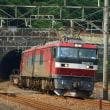 2018年6月17日 東海道貨物線 東戸塚 EH500-5 2079レ