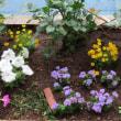フラワーロード花の植え付けボランティア