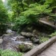 岡山*神庭(かんば)の滝&春日池の菖蒲