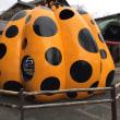 かぼちゃの美術館
