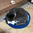2個目のネコベッド