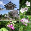 昭和の森から宝満山へ