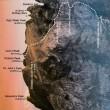 キナバル山(4,095m)登頂の思い出