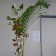 雑草と呼ばれる植物