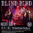 BLIND BIRD@渋谷La mamaからの