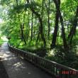 こんな時は「昭和記念公園」へ(その? 21018.7.10)