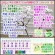 (文学・歴史)[古事記]通算354回【算太クンからの挑戦状・2019】