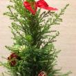 おきなわすずめうりのクリスマスツリー