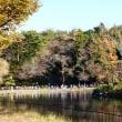 大池こども自然公園Ⅱ