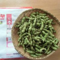北海道から届いた見事な枝豆