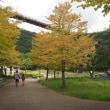 自然の中の県立公園
