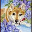 色鉛筆画385 (クレマチスと犬)