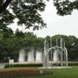 小雨の公園