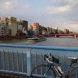ロードバイク つくば 江戸川サイクリングロード ~ スカイツリー