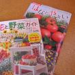 春夏野菜の栽培計画スタートです。