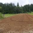 小豆、種まき準備