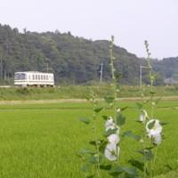 ◆かしてつに微妙な石岡市 - 2006/6/17