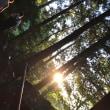 夏の早朝の鞍馬寺