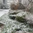 都心で午後6時に13cmの積雪