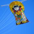 凧の文化 冬支度
