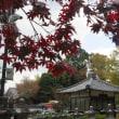 晩秋の寺へ
