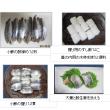 1046 小鯵の握り寿司